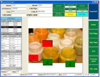 A typical Inspect Data Collect screen.